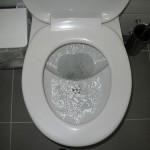 Čistota záchodové mísy
