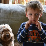Zákaz styku s dítětem, odebrání dítěte… nově by se mělo každé tři roky prověřovat